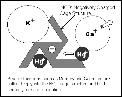 NCD Zeolite heavy metal trapping process